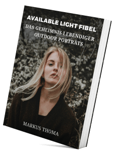 Available Light Fibel - eBook
