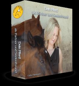 Dein Pferd als Partner und Seelenfreund - Online Seminar