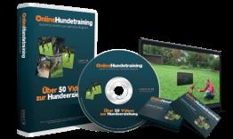Online Hundetraining - Online Videokurs