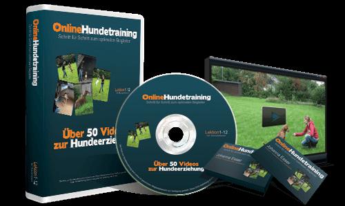 Online Hunde Training - Videokurs