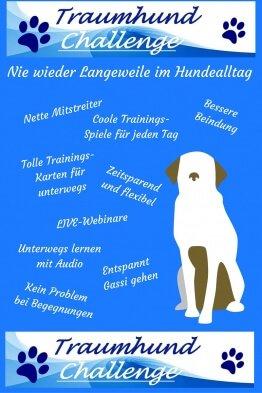 Traumhund Challenge - Nie wieder Langeweile im Hundealtag