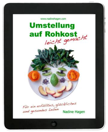 Umstellung auf Rohkost leicht gemacht - eBook